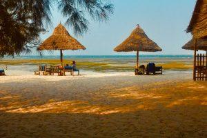 Dra på en opplevelsesreise til Zanzibar